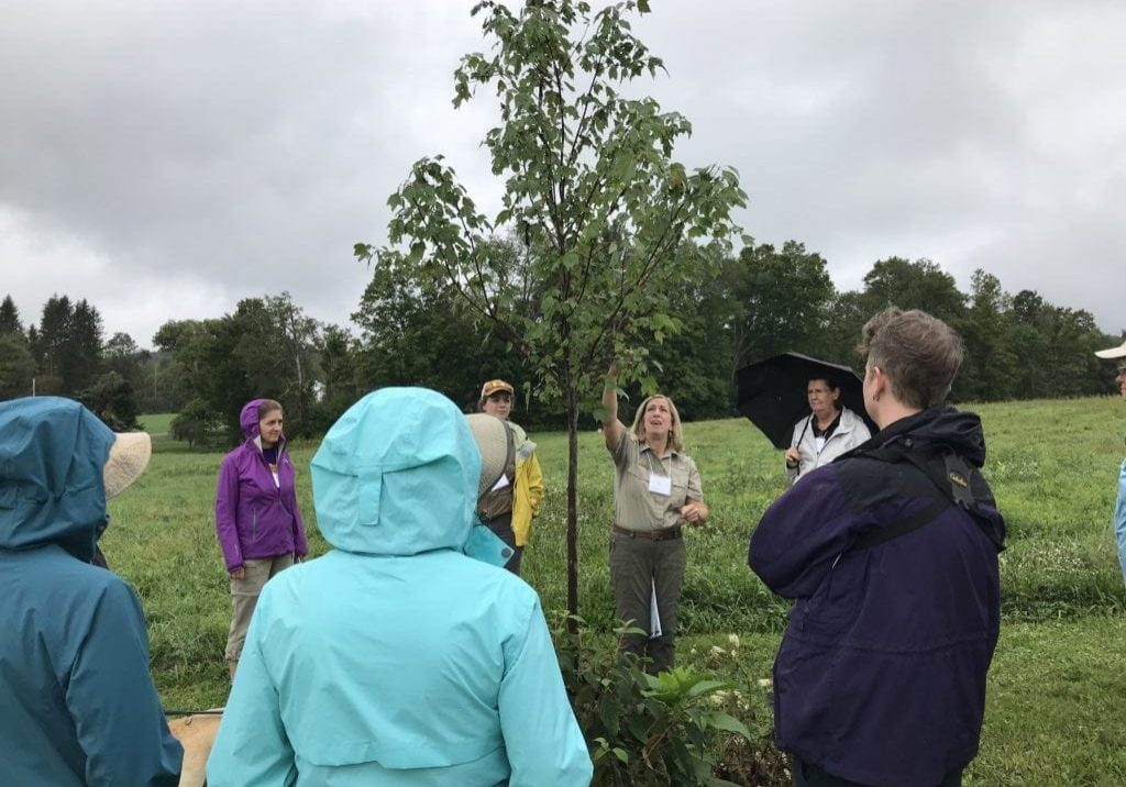 Jane Swift, from PA DCNR, leads the retreat attendees in a tree identification program (in the rain) at the Highlights Foundation site in Boyds Mills, Pa. PHOTO BY MEG MCGUIRE